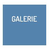 Galerie Photo et Vidéo